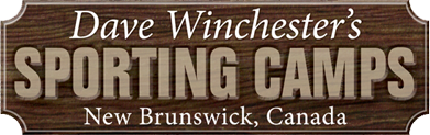Black Bear and Moose Hunting | New Brunswick | Dave Winchesters Sporting Camps